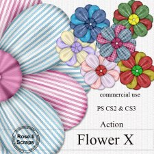 Action - Flower X