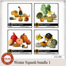 Exclusive Winter Squash Elements bundle 1 by Happy Scrap Arts
