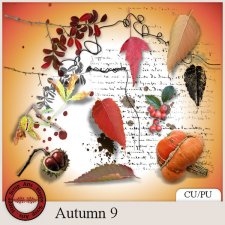 Autumn 9 elements by Happy Scrap Arts