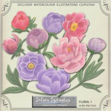 EXCLUSIVE Floral 1 Watercolours by Silver Splashes