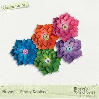 Flowers - Peony Dahlias 1