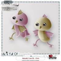 Naturally Cute 02-Chick Combo: Actions, Templates & Embellishments