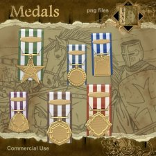 Medals of Honor by Cari Lopez