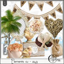 Elements CU - 249 A wedding at the beach 1 by Cajoline-Scrap
