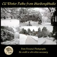 CU Winter Paths by StarSongStudio