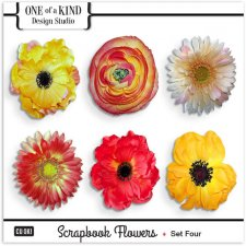 Scrapbook Flowers - Set 04