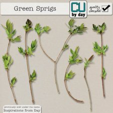 Green Sprigs - CUbyDay EXCLUSIVE
