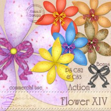 Action - Flower XIV by Rose.li