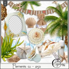 Elements CU - 250 A wedding at the beach 2 by Cajoline-Scrap
