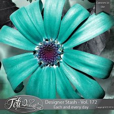 Designer Stash Vol 172 - Each and every day - by Feli Designs