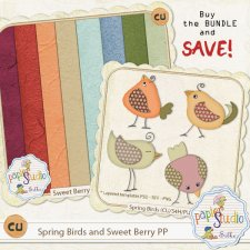 Spring Birds and SB Recycled PP Bundle EXCLUSIVE by Papierstudio Silke