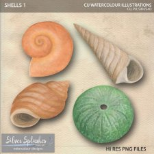 EXCLUSIVE Shells Watercolour by Silver Splashes