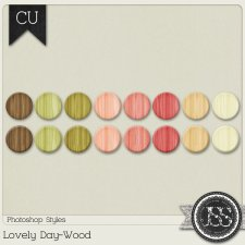 Lovely Day Wood Photohsop Styles by Just So Scrappy