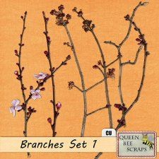 Branches Set 1
