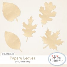 Papery Leaves by Kim Cameron
