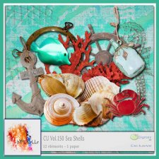 Vol. 150 Sea Shells EXCLUSIVE bymurielle