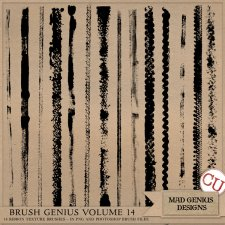 Brush Genius Volume Fourteen by Mad Genius Designs