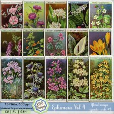 Ephemera Elements Vol 04 - flower cards 1 by ADB Designs