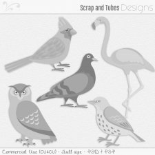 Bird Templates (CU4CU) by Scrap and Tubes