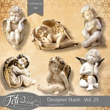 Designer Stash Vol 25 - CU by Feli Designs