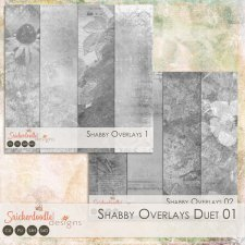 Shabby Overlays Duet 01 by SnickerdoodleDesigns