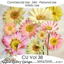 Spring Florals - CU Vol 38 by MagicalReality Designs