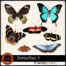 Butterflies 3 elements CU4CU