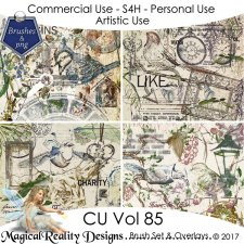 Brush Set And Overlays - CU Vol 85 {Bundle} by MagicalReality Designs
