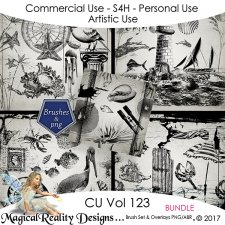 Brush Set And Overlays - CU Vol 123 {Bundle} by MagicalReality Designs