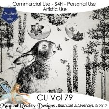 Brush Set And Overlays - CU Vol 79 by MagicalReality Designs