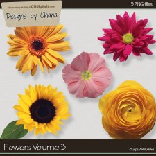 Flowers Vol 3 - EXCLUSIVE Designs by Ohana