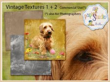 Vintage Painted Texture 2 EXCLUSIVE by PapierStudio Silke