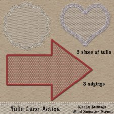 Tulle Lace Action by Karen Stimson