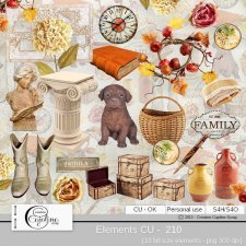 Elements CU - 210 by Cajoline-Scrap