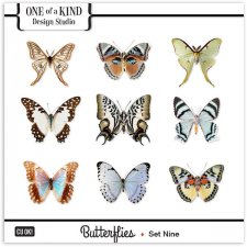 Butterflies - Set Nine