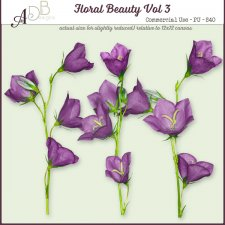 Floral Beauty Elements Vol. 03 by ADB Designs