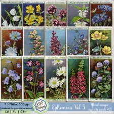Ephemera Elements Vol 05 - flower cards 2 by ADB Designs