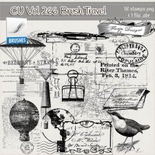 CU Vol 266 Travel Brush by Florju Designs