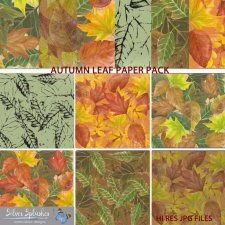 EXCLUSIVE Autumn Leaf Paper Pack 1 by Silver Splashes