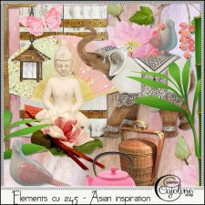 Elements CU - 245 Asian inspiration by Cajoline-Scrap