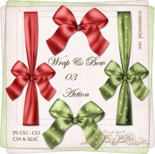 Action - Wrap & Bow III by Rose.li