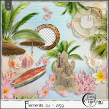 Elements CU - 259 at the beach by Cajoline-Scrap