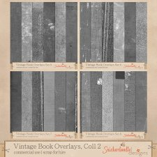 Vintage Book Overlays Collection 2 by SnickerdoodleDesigns