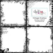 Vintage border overlays Lilmade Designs