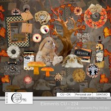 Elements CU - 224 by Cajoline-Scrap