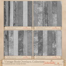 Vintage Book Overlays Collection by SnickerdoodleDesigns