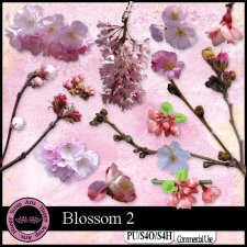 Blossom 2 CU mini kit by Happy Scrap Art