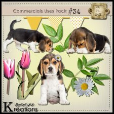 CU Vol. 34 Beagle by Kreen Kreations