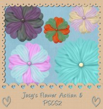 Flower Action 06 by Josy