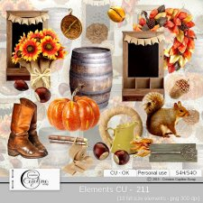 Elements CU - 211 by Cajoline-Scrap